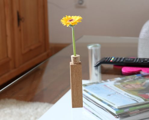 Blümla als kleines Geschenk im Wohnzimmer